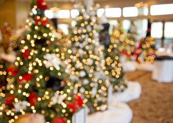 Christmas Lights Bonanza in Everton